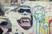 <h2>Monkey</h2><p></p>