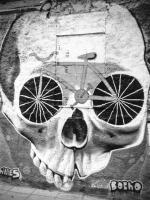 <h2>Skull</h2><p></p>